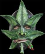 26367-weed