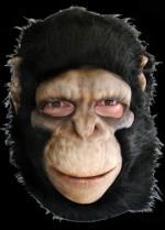 chimpanzeehalloweenmaskfull1