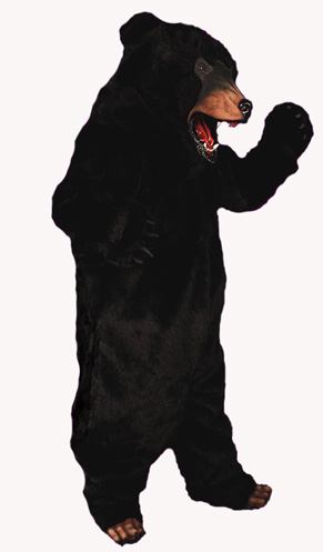 costume-bear